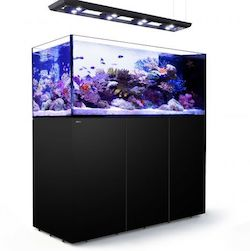 Red Sea REEFER™ Peninsula 650 Deluxe Black