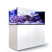 Red Sea REEFER™ Peninsula 650 White