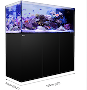 Red Sea REEFER™ Peninsula 650 Black