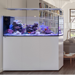 Red Sea REEFER™ Peninsula 650 Deluxe White