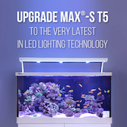 Red Sea S Max LED Upgrade Packages
