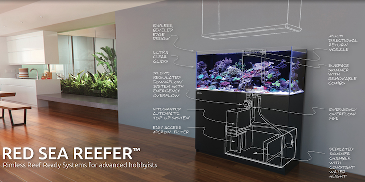 Red-Sea-REEFER-System