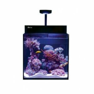 Red Sea Max Nano – Aquarium Only